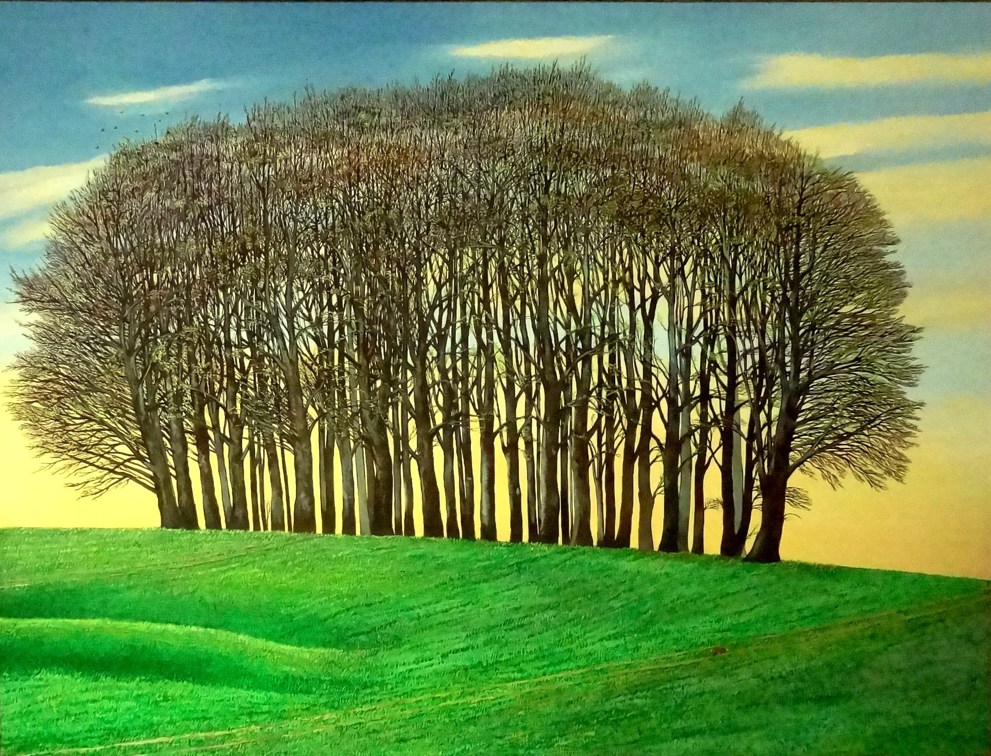 New Growth; Dorset Clump of Trees, Liz Wright