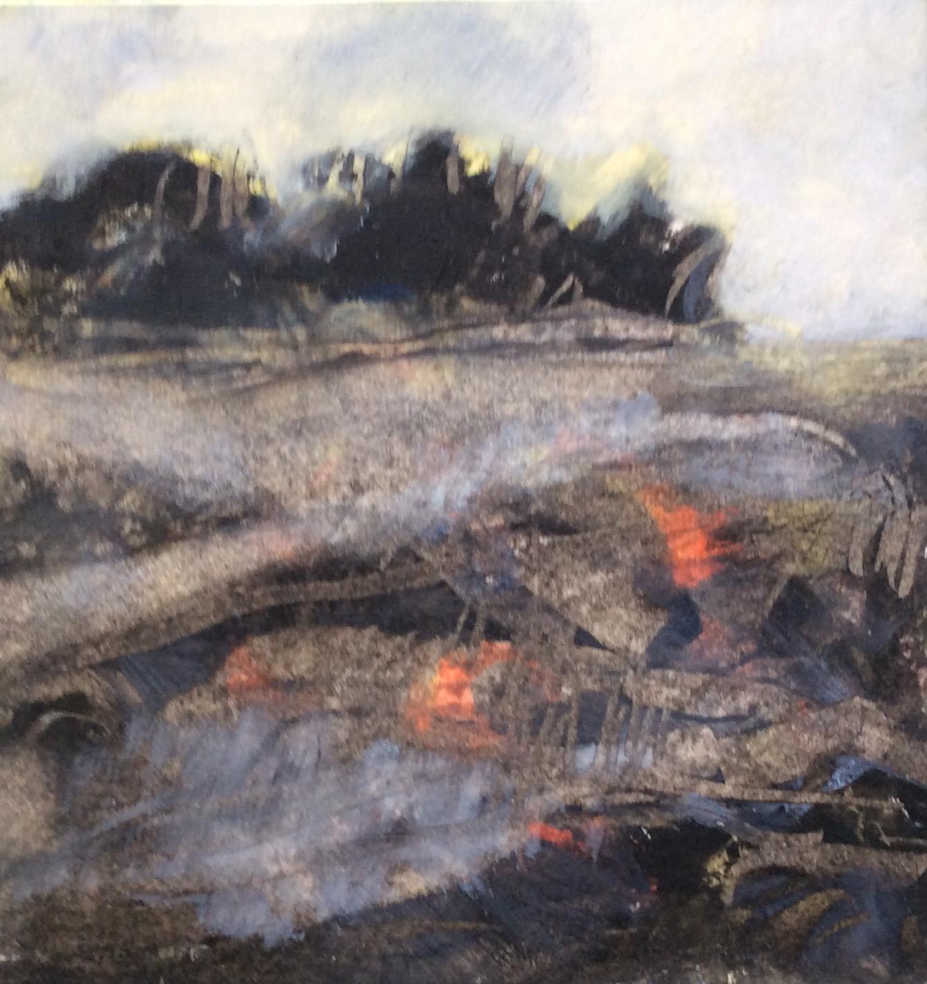 Arctic Fire, George Christie