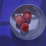 Three apricots – Robert Mountjoy